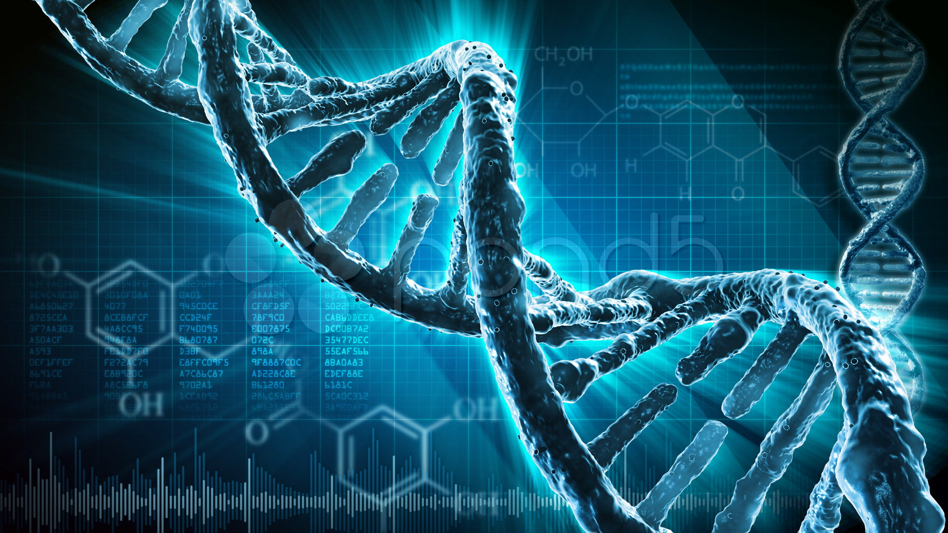 brand metamorphosis mutation of brand dna The purine synthesis gene prat2 is required for drosophila metamorphosis (brand and perrimon 1993) sequence identity and thus dna fragments corresponding.