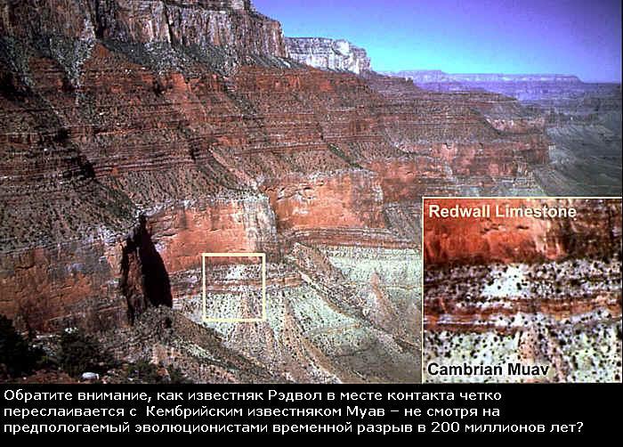 Наверное гораздо более.  При длительно стабильном базисе эрозии материк нивелируется выветриванием под ноль...