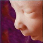 Борьба против абортов – неотъемлемая часть справедливого общества