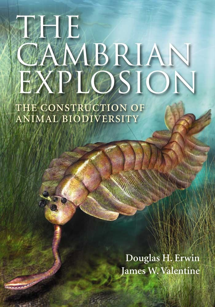 an analysis of the cambrian explosion Geoscience research institute and has been the subject of much comment and analysis the cambrian explosion is most easily explained as the result of a.