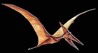Птерозавр был поразительной летающей