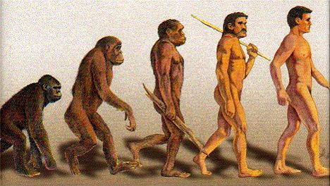 Мнение эволюциониста: «Обманывать учеников, чтобы они поверили в эволюцию, – это нормально». Evolution_468x264