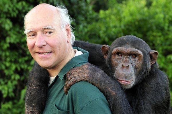Опровергая миф о близости человека к обезьянам
