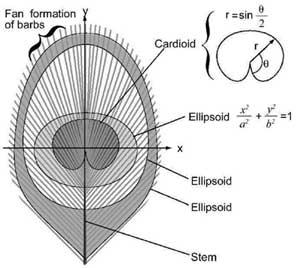 Известный эксперт по биомиметике отказывается от «эволюционного проекта»